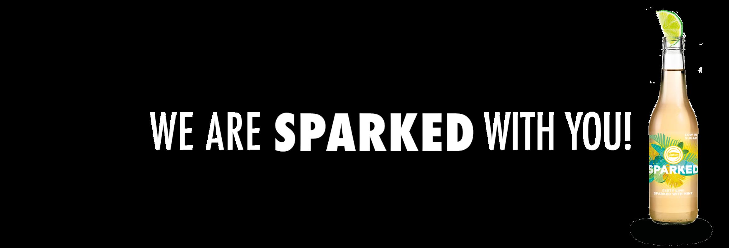 La Cubanita SPARKED 2020 Website banner Homepage v12 1